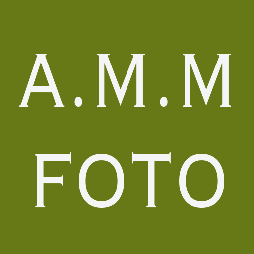 A.M.M. Foto